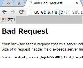 Bad Requestの対処法