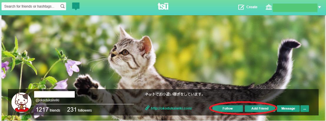 tsu(スー)画面